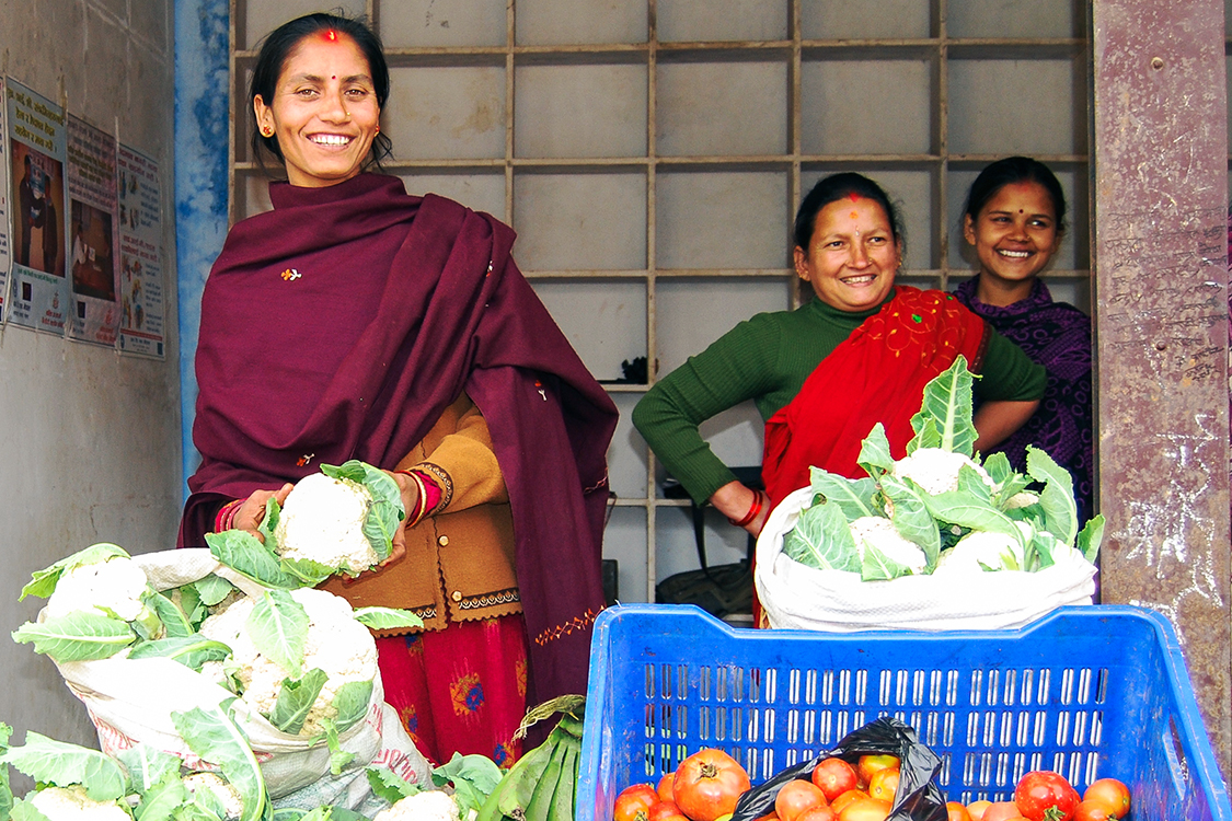 Nepal_Mus_Collection-Center-Mirmi-Syangja_Sdc