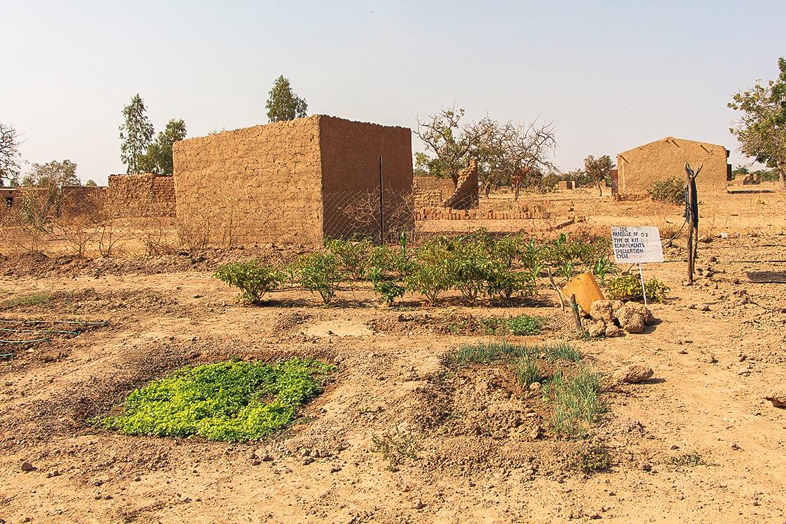 2013_Burkina-Faso_Tech-Center_Drip-Irrigation_Img_1016_-Sdc