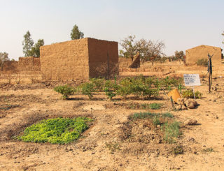 2013_Burkina-Faso_Tech-Center_Drip-Irrigation_Img_1016_-Sdc