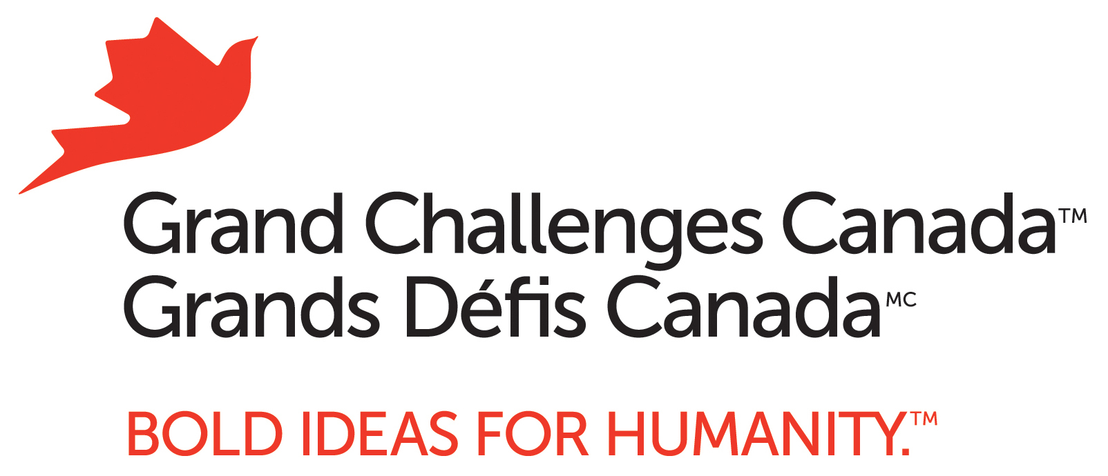 Grand Challenges Canada4